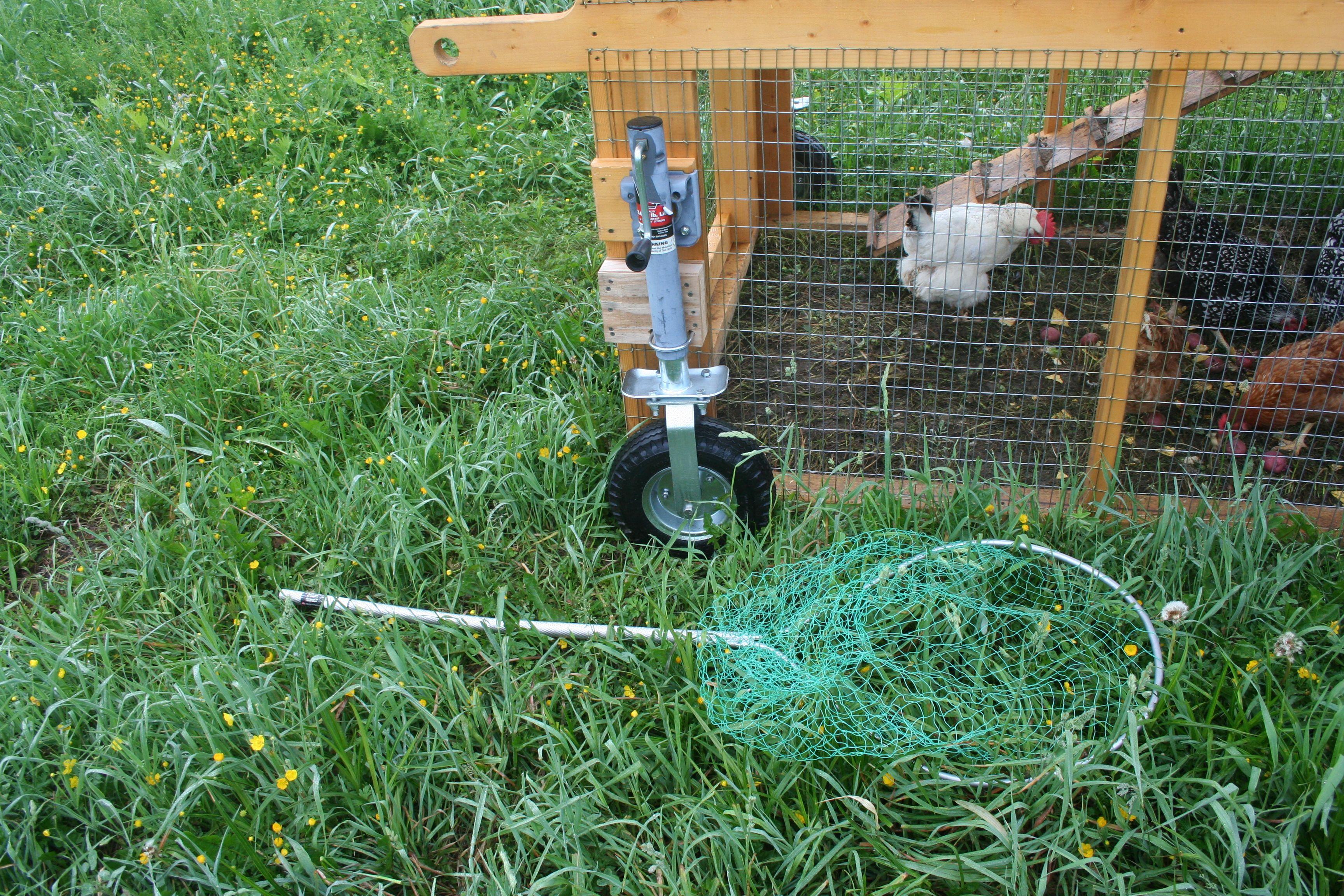 Chicken Tractors On Wheels : Marscoop