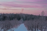 sunrise over lilac